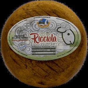 Ricciola